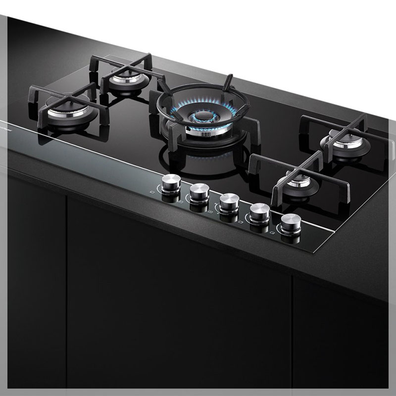 Repaired appliance of Fisher and Paykel in Adelaide